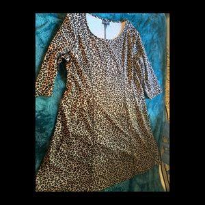 Lane Bryant Dress
